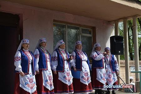 Бобруйск, Киселевичи, праздник в кругу друзей под открытым небом